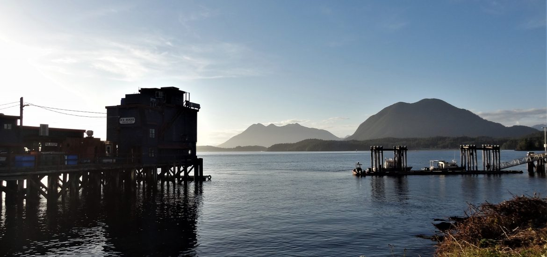 tofino-paysage-ile-vancouver