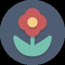 fleur-icone-pvt