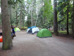 Shuswap-Lake-Campground