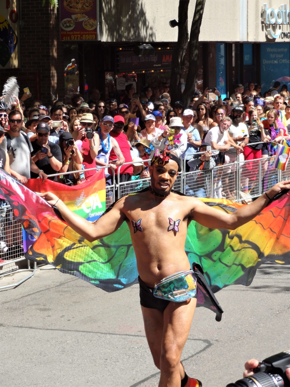 Papillon Pride Toronto 2019