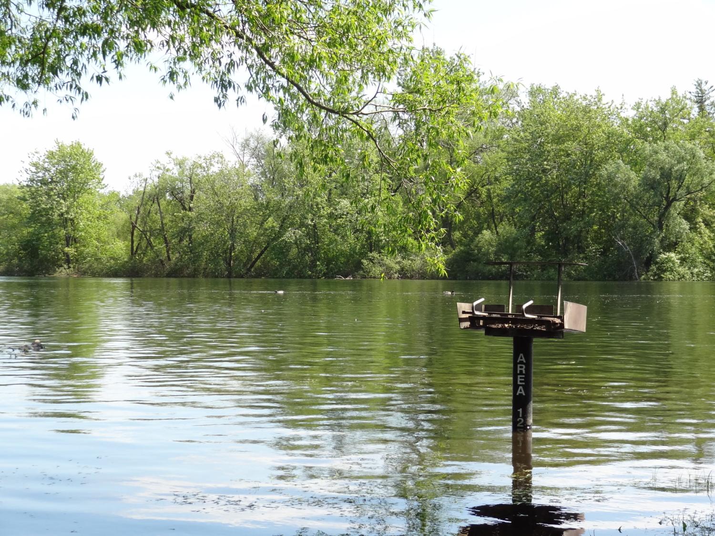 Iles de Toronto - Inondations