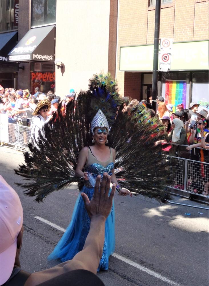 Costume Peacock Toronto Pride